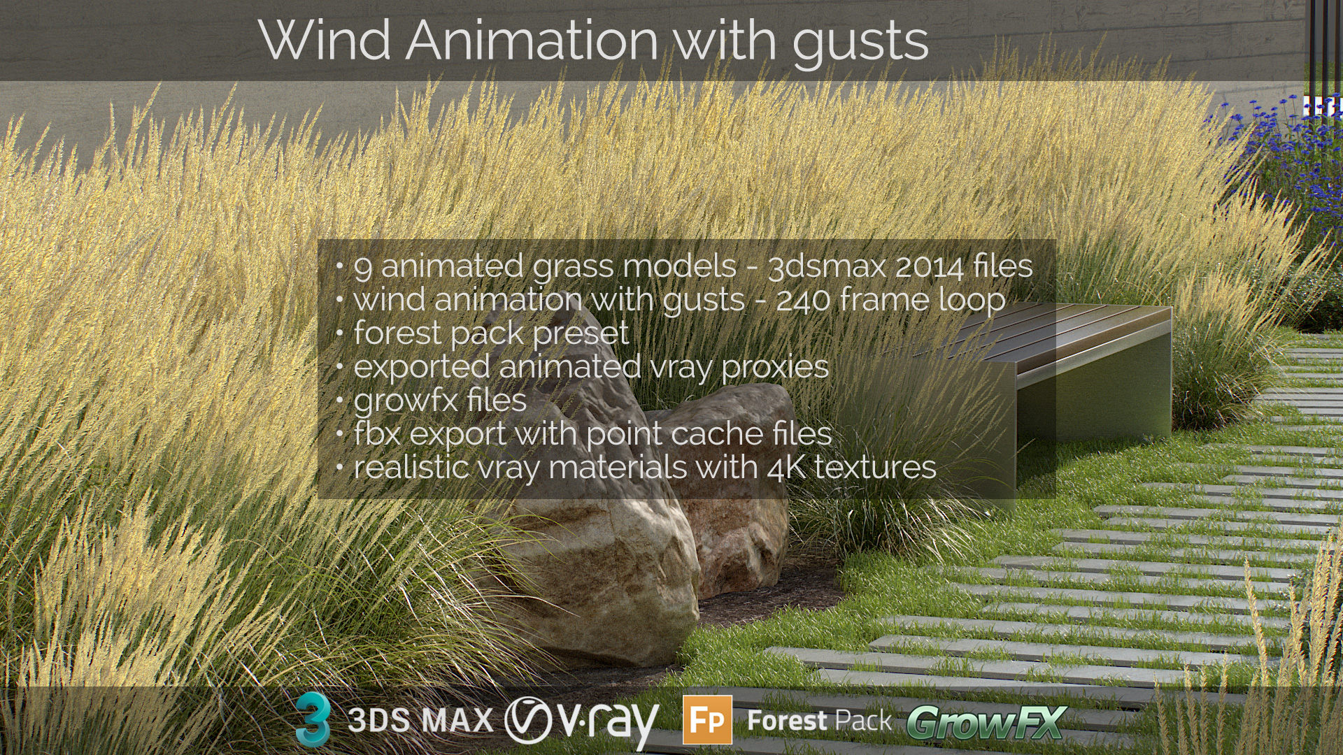 Feather Reed Grass wind animation with gusts